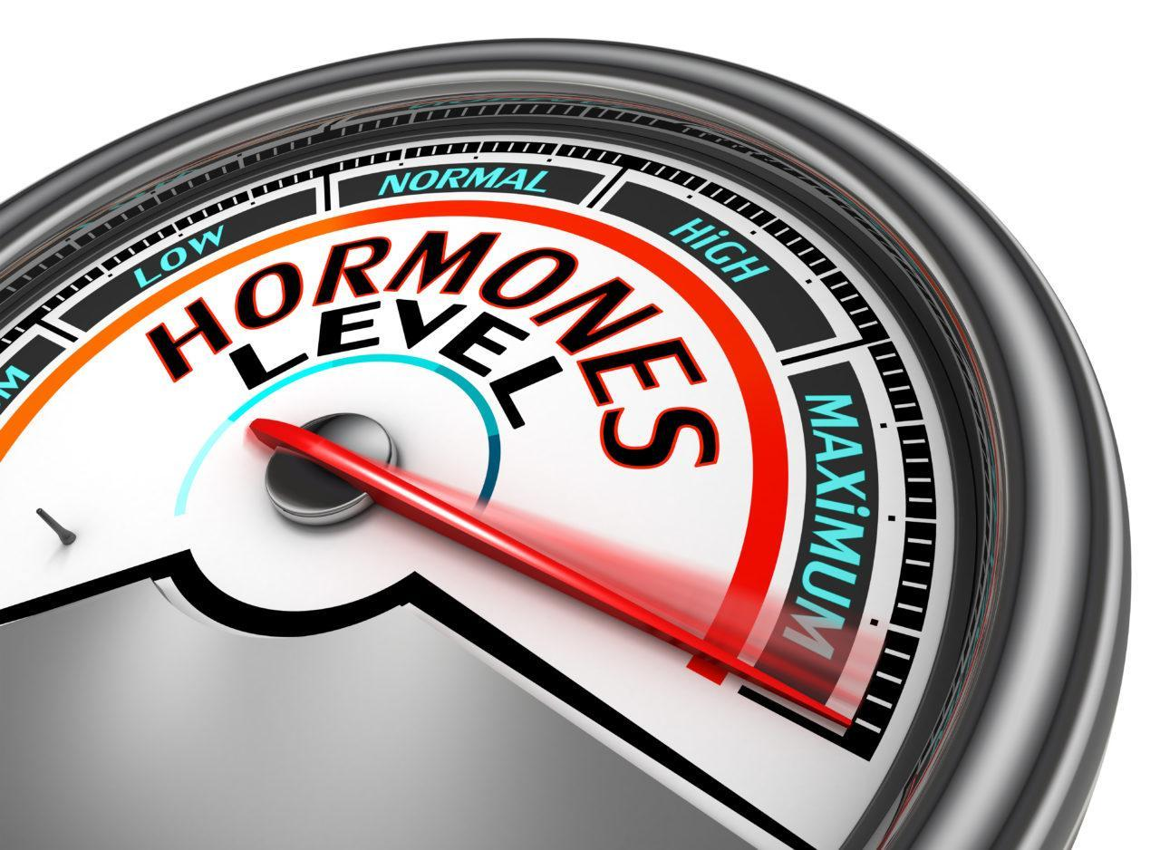 Influence of hormones on hair loss